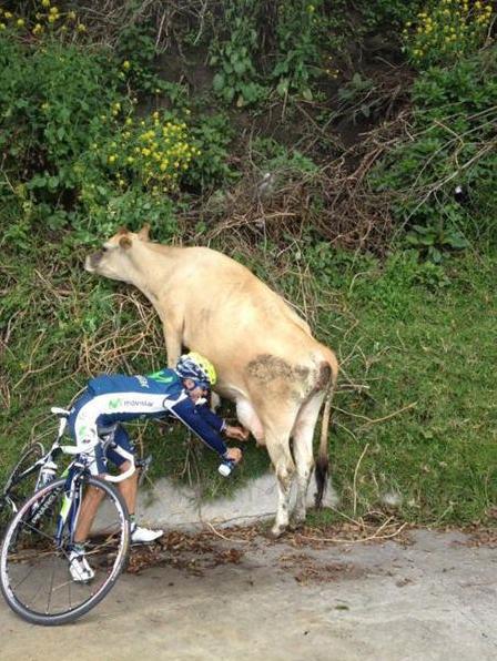 melk en fietsen
